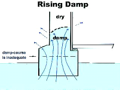 This is how rising damp occurs